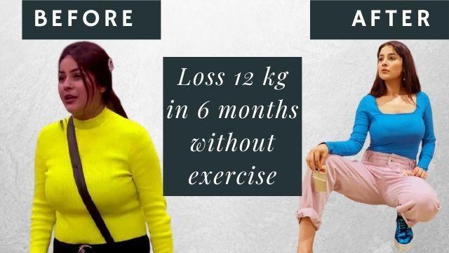 Shehnaaz Kaur Gill Diet Plan in Hindi